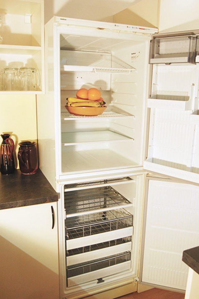 Lednice s mrazničkou